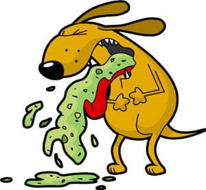 cartoon dog with dog allergies vomitting