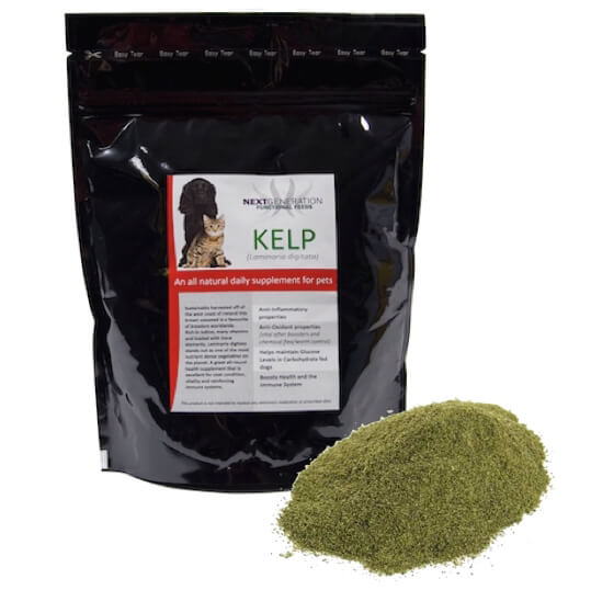 Where is Your Spirulina From and Why It's Important... Dogs First