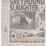 Irish Sun reveals larry earle kills greyhounds for €10