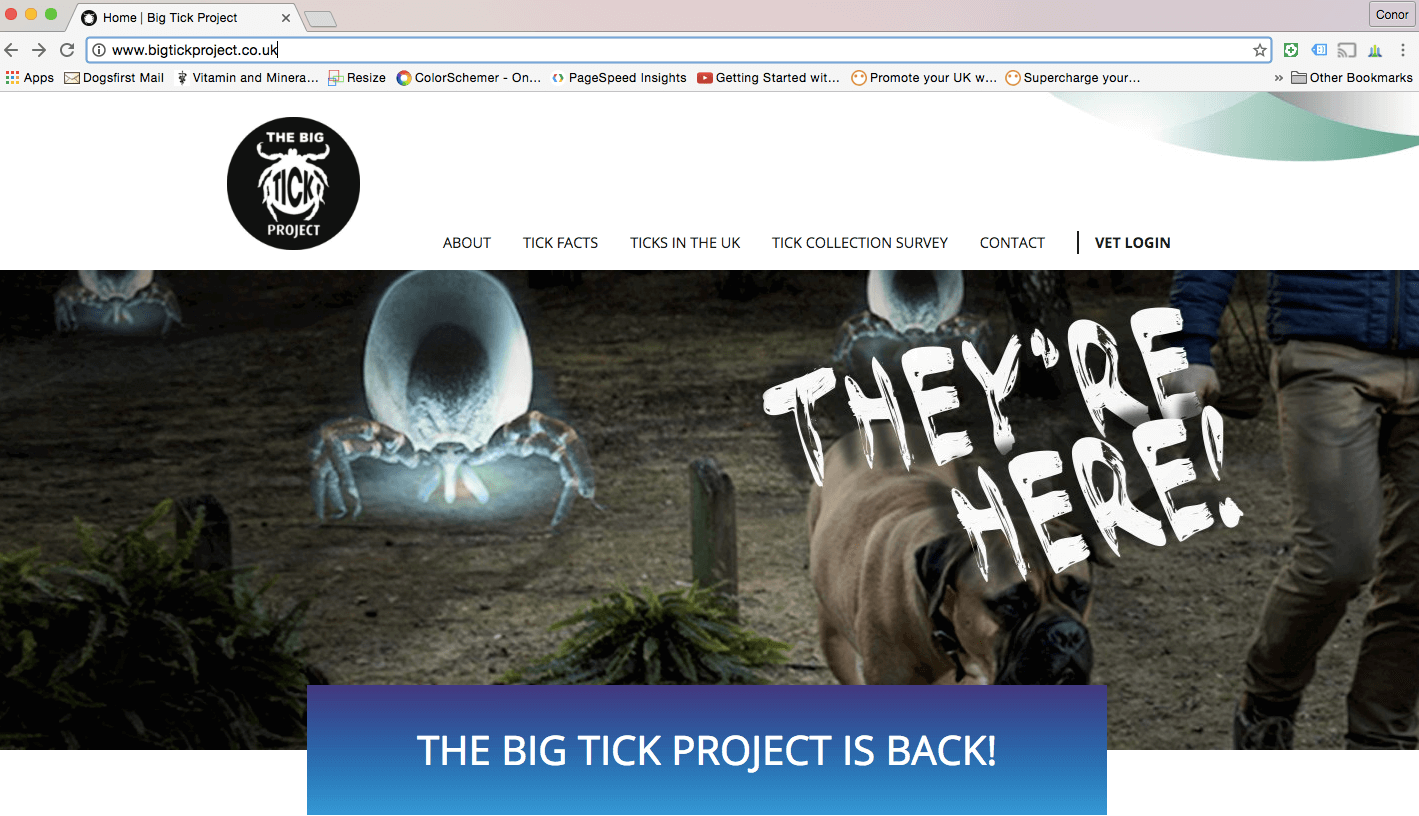 The Big Tick Project Dogs First