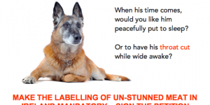 Petition: Make the Labelling of Un-Stunned Meat in Ireland Mandatory