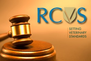 RCVS Publishes Complementary Medicines Statement