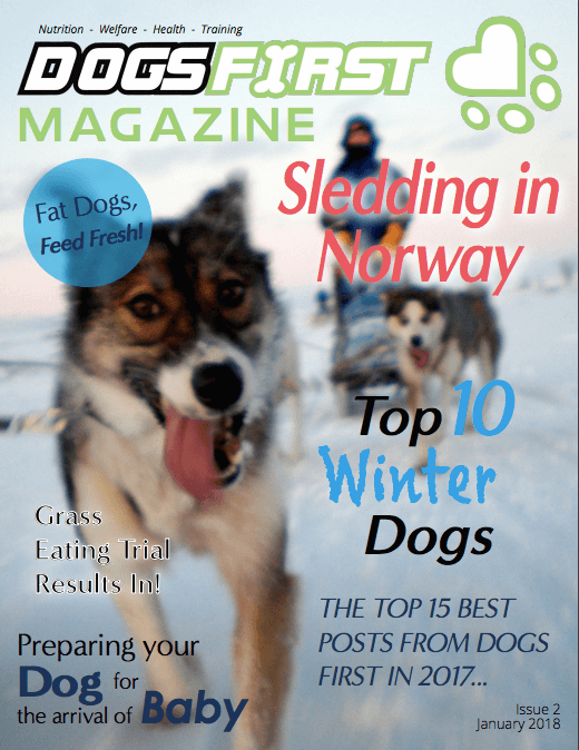 Dogs First Magazine Jan 2018 Issue cover