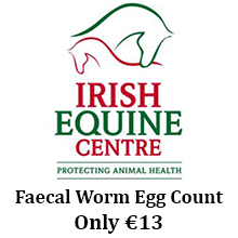 Faecal Worm Egg Count Irish Equine Centre