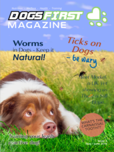 Dogs First Magazine