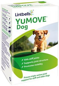 Yumove for arthritis in dogs