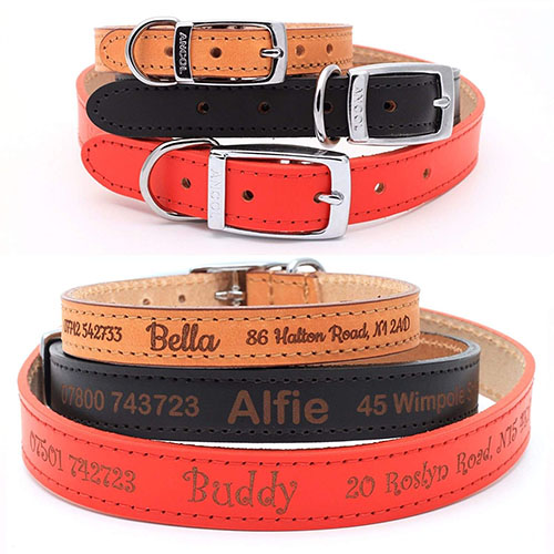 Genuine Leather Dog Collars UK
