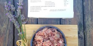 Why I think Paleo Ridge is one of the best raw dog foods