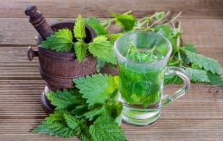 a small glass of nettle tea