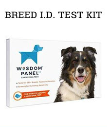 Breed I.D. Test Kit - Amazon