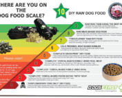 An infographic showing the dog food scale, from bad to good