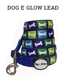 dog e glow lead - Amazon