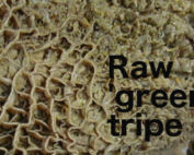 green tripe for dogs
