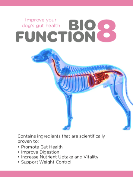 BioFunction8 for gut health in dogs