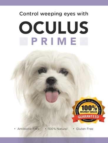 Oculus Prime for the control of weepy eyes in dogs