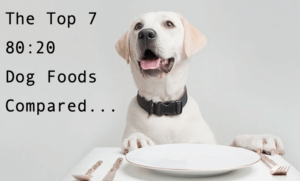 Top 7 80:20 dog foods compared