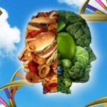 The Epigenetic Effect of Food, What we Have Overlooked in Pets, Part 1