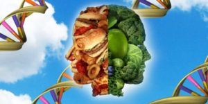 The Epigenetic Effect of Food, Part 1 What we Have Overlooked in our Pets