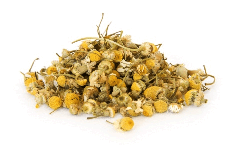 organic chamomile is a popular herb to include in your itchy dog home remedy