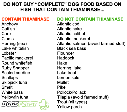 Important Notes on Thiamine (Vit B1) for Dry and Raw Feeders…