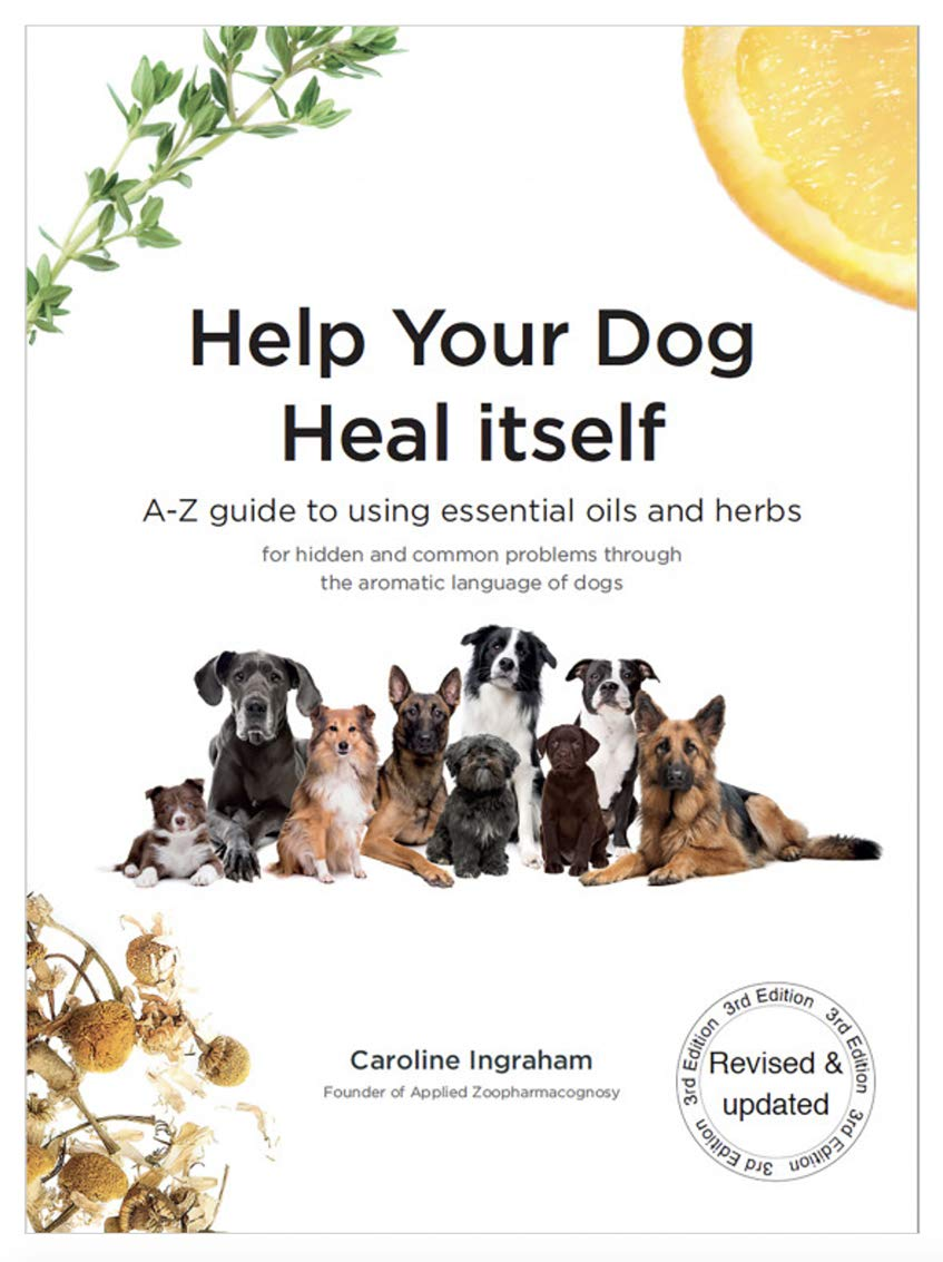 Help Your Dog Heal Itself (zoo pharmacognosy)