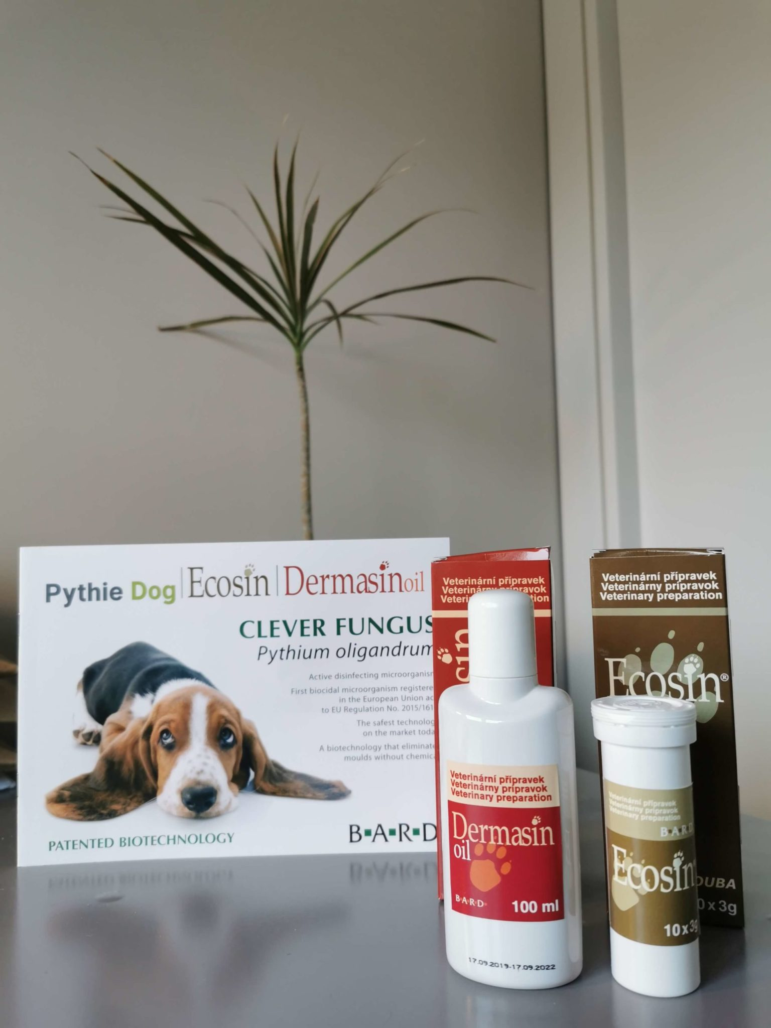 New natural solution for stubborn yeast issues in dogs…