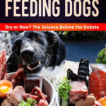 Feeding Dogs, Now Available on Amazon!