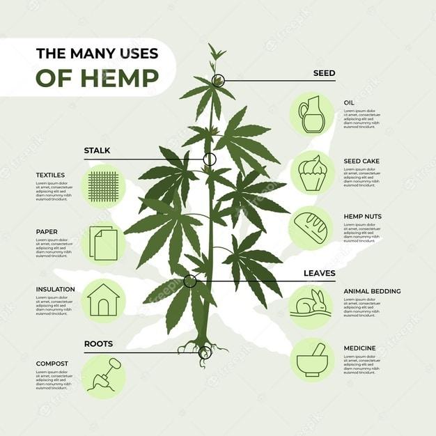 the many uses of hemp